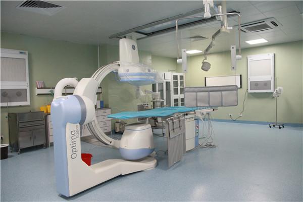心血管系统.JPG